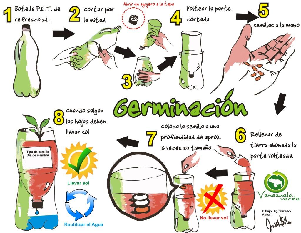 diagrama germinación fondo blanco