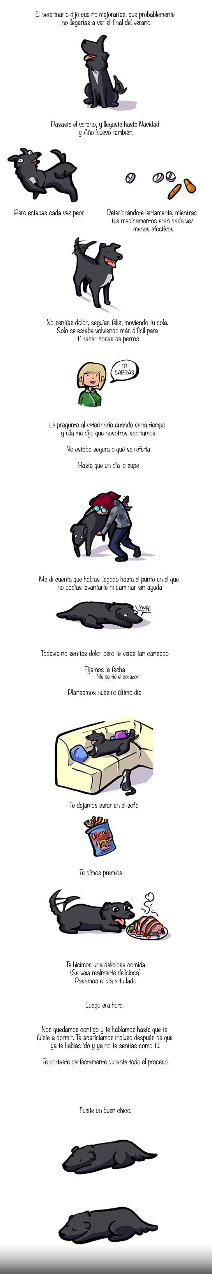 comic vida perro
