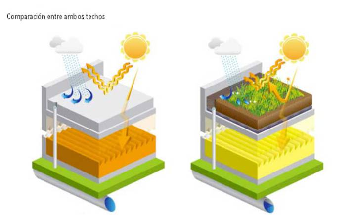 plantas techos