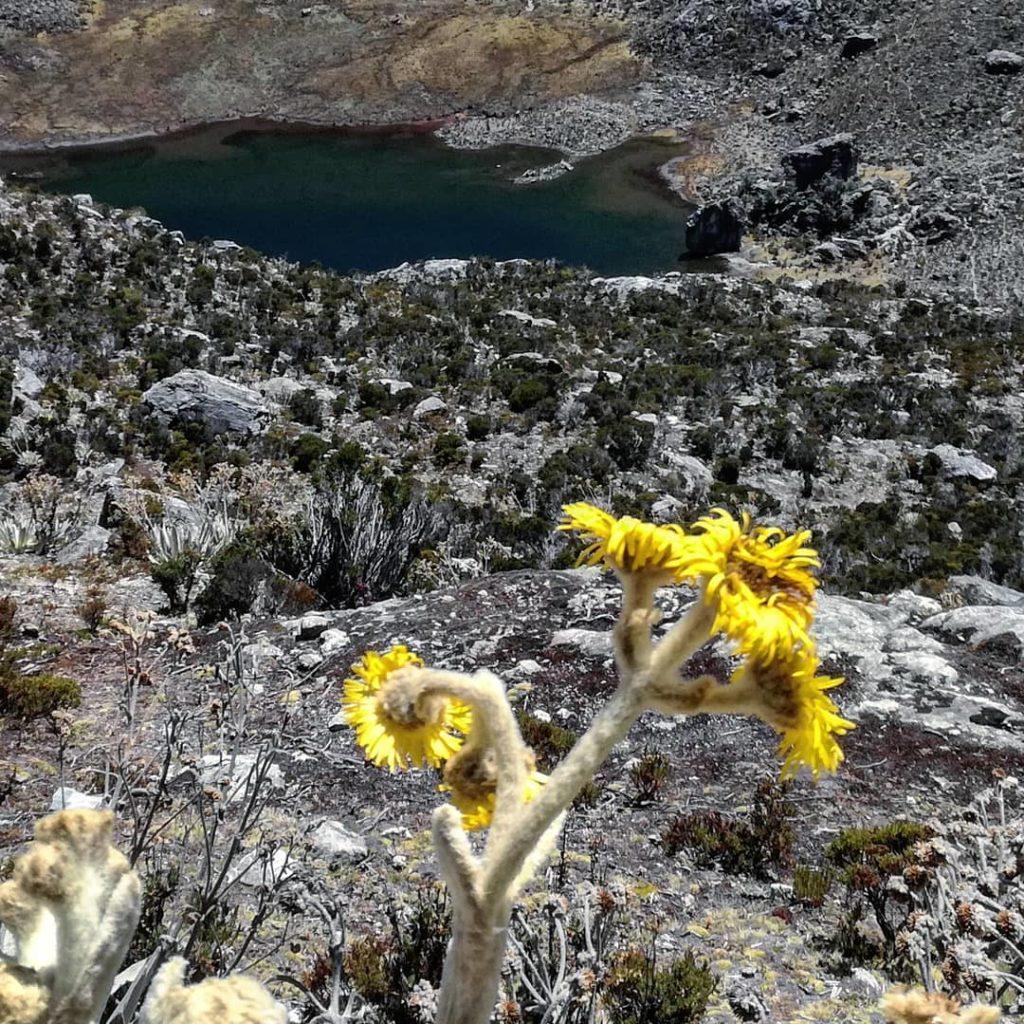 Laguna en el paramo de Mérida, Venezuela