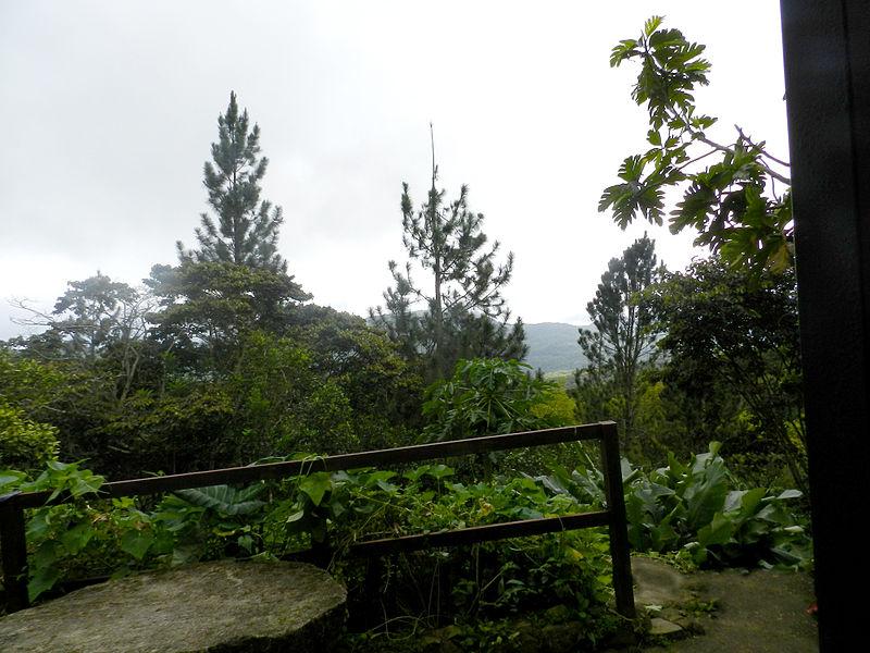 Paisaje de la Sierra de San Luis, Venezuela